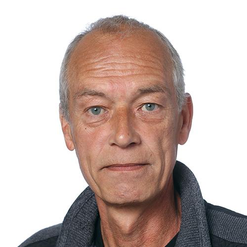 Maurice Stoelinga
